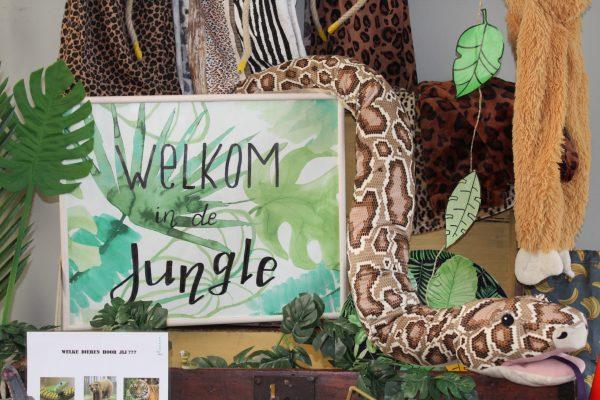 themakist Jungle kinderfeestje Schaijk